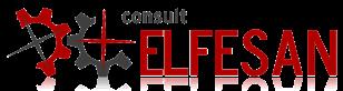 Elfesan.ro - servicii de consultanta in afaceri si management